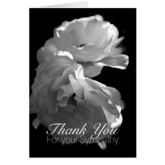 Wild White Roses 1 Sympathy Thank You Note Card