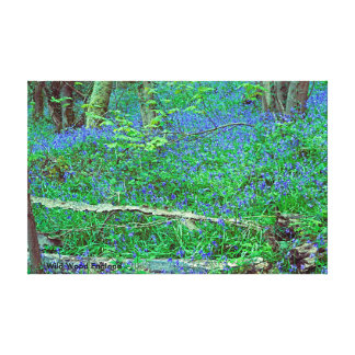 Wild Wood England Canvas Print