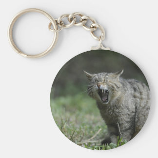 Wildcat Basic Round Button Keychain
