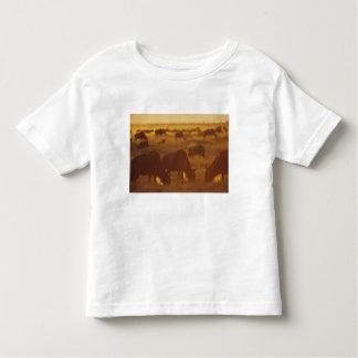 Wildebeest grazing at sunset, Maasai Mara, Toddler T-shirt