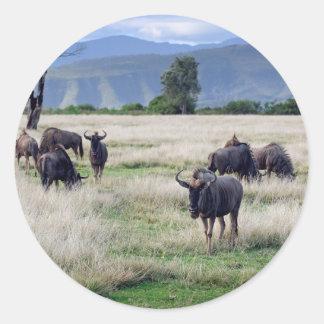 Wildebeest herd round sticker
