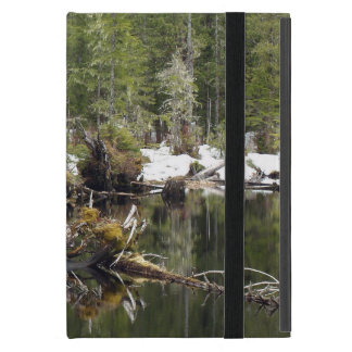 Wilderness Forest & Lake Nature Photo Design Cover For iPad Mini