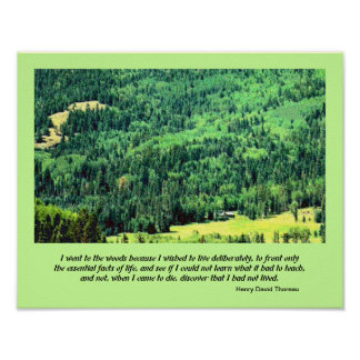 wilderness mountain landscape art poster