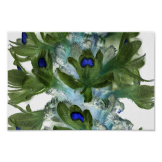 Wildflower 1, Ultraviolet Photography Poster