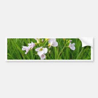 Wildflower delight bumper sticker