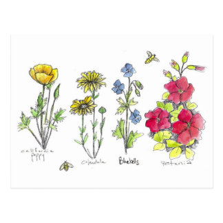 Wildflower Garden Botanical Watercolor Art Bees Postcard