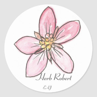 Wildflower Herb Robert Classic Round Sticker