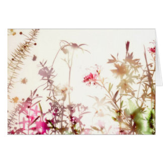 Wildflower Note Card