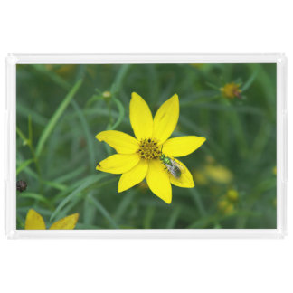Wildflower with small Green Bee, Vanity Tray. Serving Tray