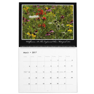 Wildflowers 2017 Calendar By Thomas Minutolo