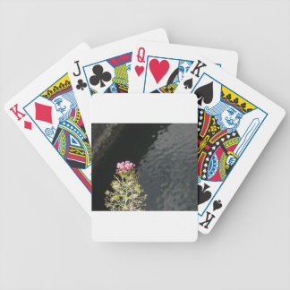 Wildflowers against the water surface of a river bicycle playing cards