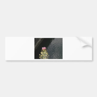 Wildflowers against the water surface of a river bumper sticker