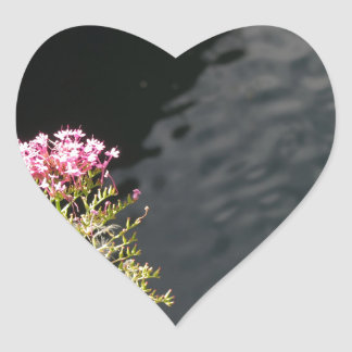 Wildflowers against the water surface of a river heart sticker