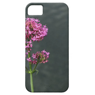 Wildflowers against the water surface of a river iPhone 5 cases