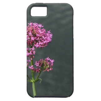 Wildflowers against the water surface of a river iPhone 5 cover