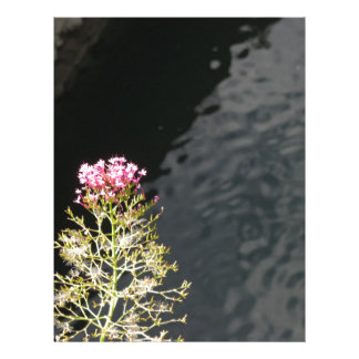 Wildflowers against the water surface of a river letterhead