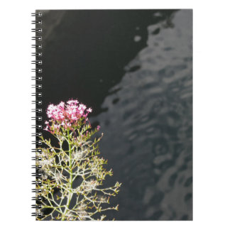 Wildflowers against the water surface of a river notebook