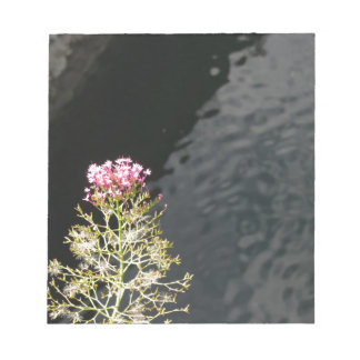 Wildflowers against the water surface of a river notepad