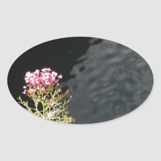 Wildflowers against the water surface of a river oval sticker