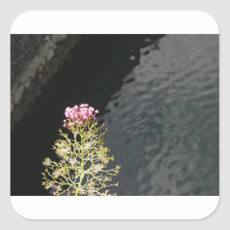Wildflowers against the water surface of a river square sticker