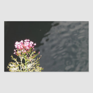 Wildflowers against the water surface of a river sticker