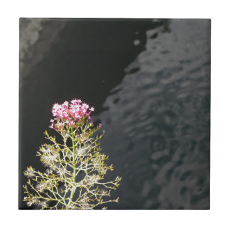 Wildflowers against the water surface of a river tile
