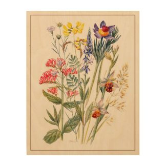 Wildflowers Antique Watercolor Wood Wall Art