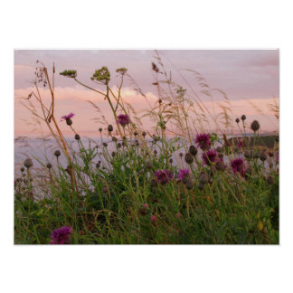 Wildflowers at Dusk Posters
