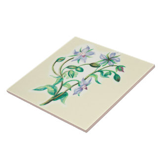 Wildflowers Country Kitchen Ceramic Tile Borage