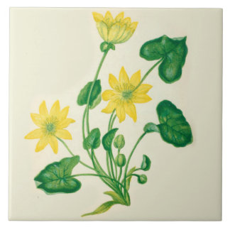 Wildflowers Country Kitchen Ceramic Tile Celandine