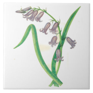 Wildflowers Country Kitchen Ceramic Tile Hyacinth