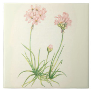 Wildflowers Country Kitchen Ceramic Tile Sea Pinks