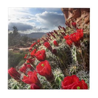 Wildflowers - Grand Canyon - Arizona Tile
