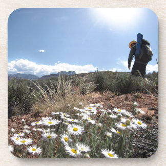 Wildflowers - Grand Canyon - Thunder River Trail Drink Coaster