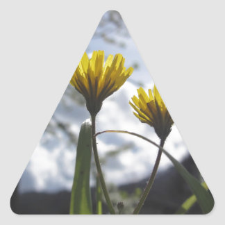 Wildflowers illuminated by the sunlight triangle sticker