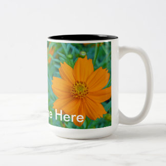 Wildflowers in South Carolina 2 Two-Tone Coffee Mug