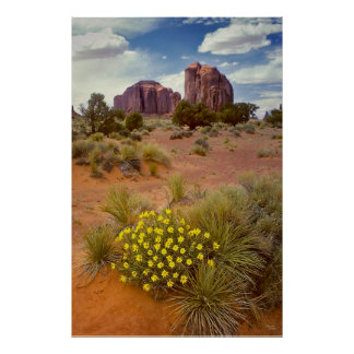 Wildflowers - Monument Valley - Arizona Poster