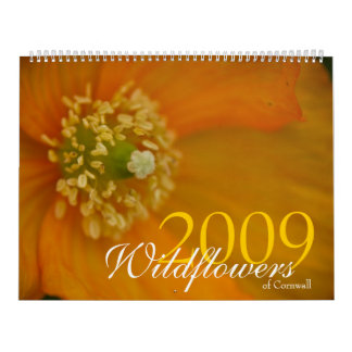 Wildflowers of Cornwall 2009 Calendar