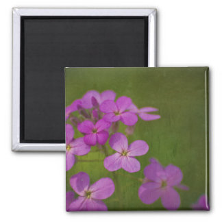 wildflowers of Ohio Square Magnet