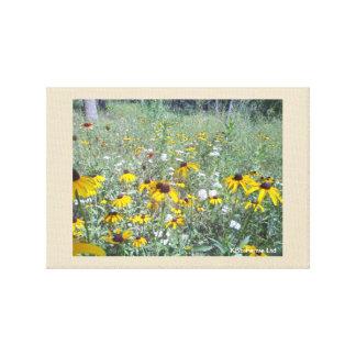 Wildflowers On The Prairie Canvas Print