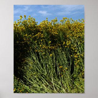 Wildflowers Sunflowers Poster