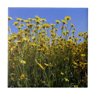 Wildflowers Sunflowers Tiles