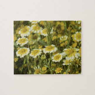 Wildflowers Yellow and White Jigsaw Puzzle