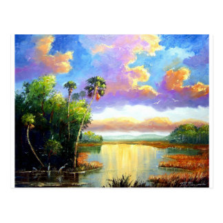 Wildl Florida Country Post Card