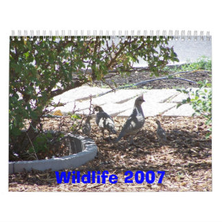Wildlife 2007 wall calendar