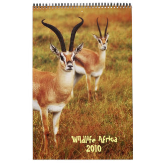 Wildlife Africa calendar 2010 - African safari