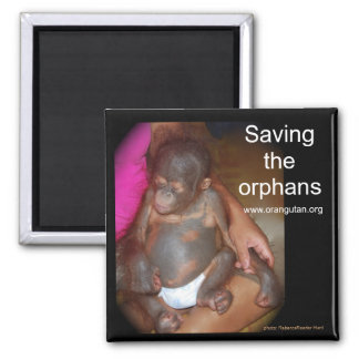 Wildlife Babies: Save the orphans Magnet