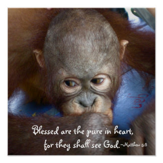 Wildlife Baby : Blessed are the pure in heart Poster