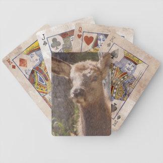Wildlife  Baby Elk Poker Deck