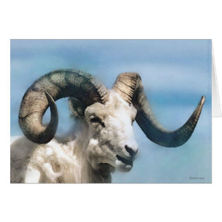Wildlife-Big Horn Card